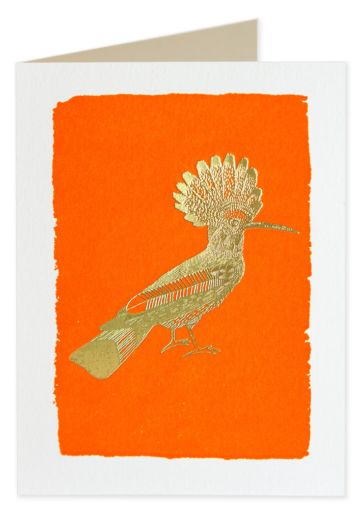 Gold Foiled Orange Hoopoe Pack of 5 Cards