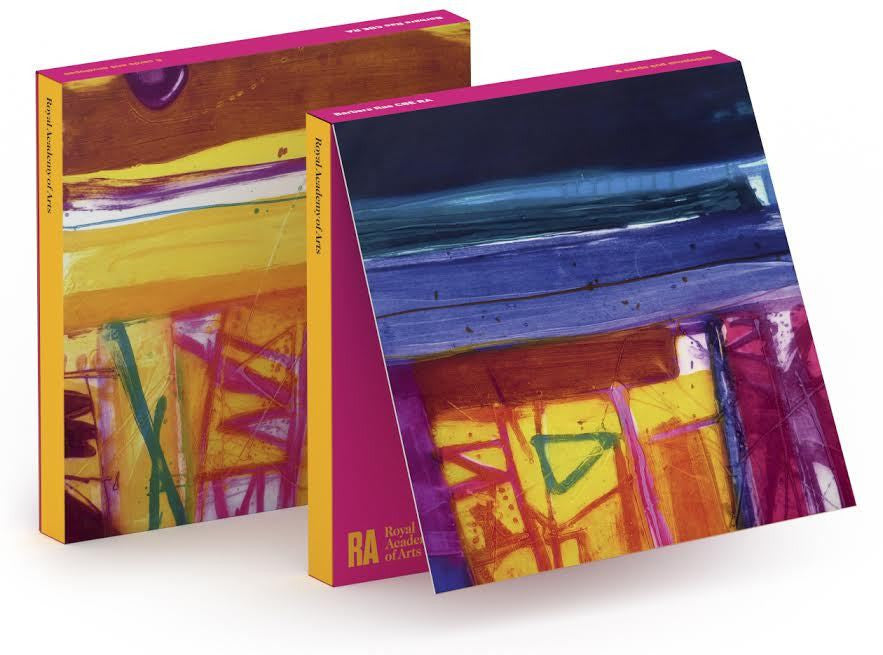Barbara Rae Abstract Stripes Notecard Wallet