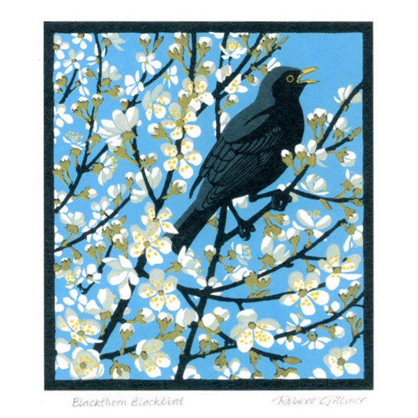 Blackthorn Blackbird Card