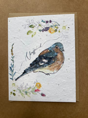 Chaffinch Seed Card