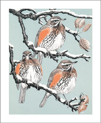 Redwings Card