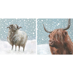 Snowy Sheep and Cow Box of 10 Cards