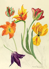Watercolour Tulips Card