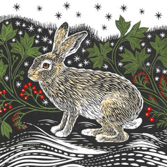 Starlight Hare Charity Pack of 8 Cards