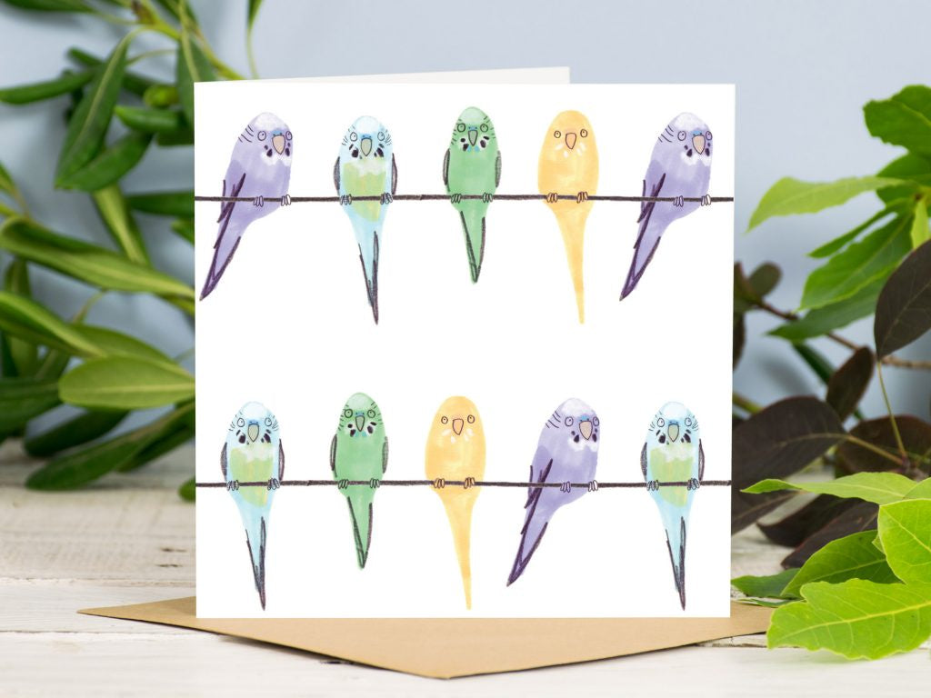 Budgies in a Line Card
