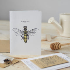 Queen Bee Seedling Card