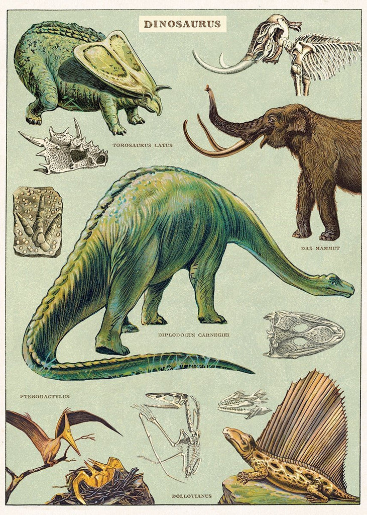 Dinosaurus Sheet Wrap