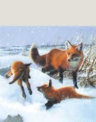 Fox In Snow 8 Pack Of Christmas Cards