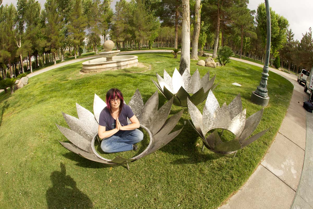 Stainless Steel Lotus Fire Pit Call For Quote Kristen Hoard