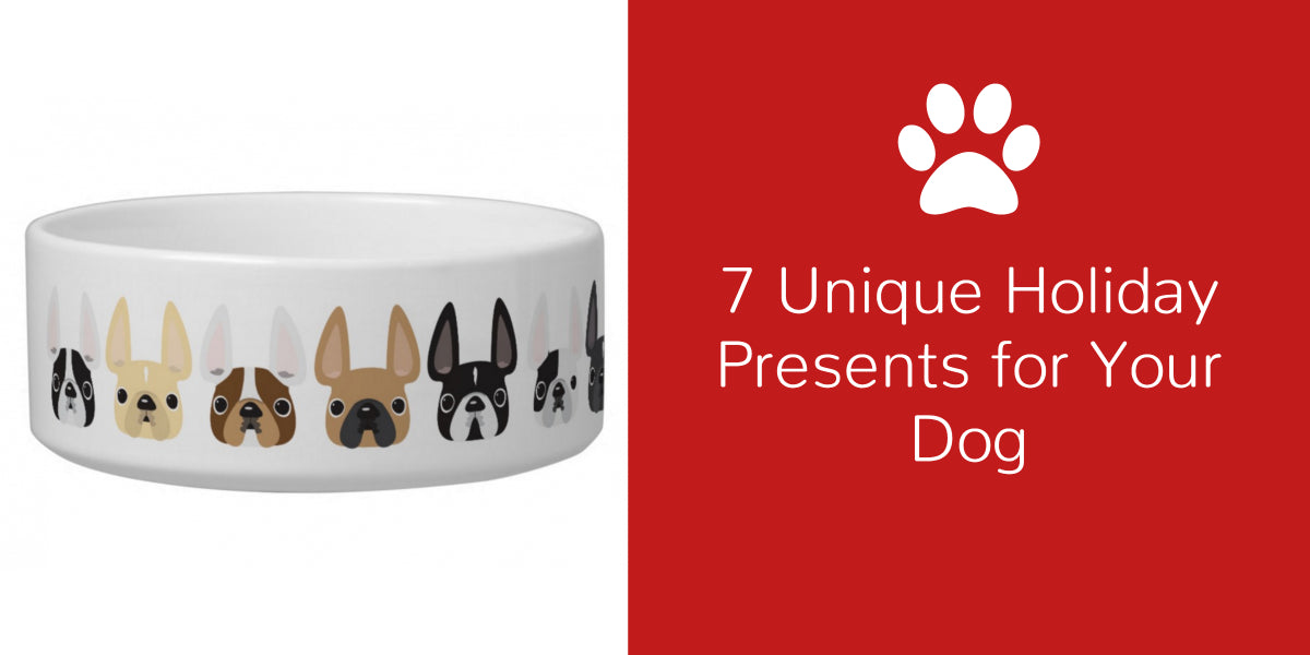 7 Unique Holiday Presents for Your Dog