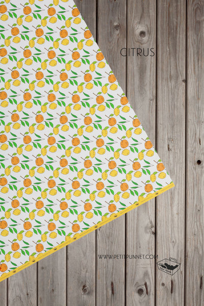 Graphic Series Wrapping Paper 'Citrus' - Pack of 2