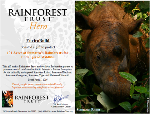 The Last Stand of The Sumatran Rhino- Rainforest Trust EnviroBuild Donation