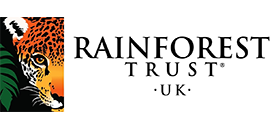 Donating to Rainforest Trust UK