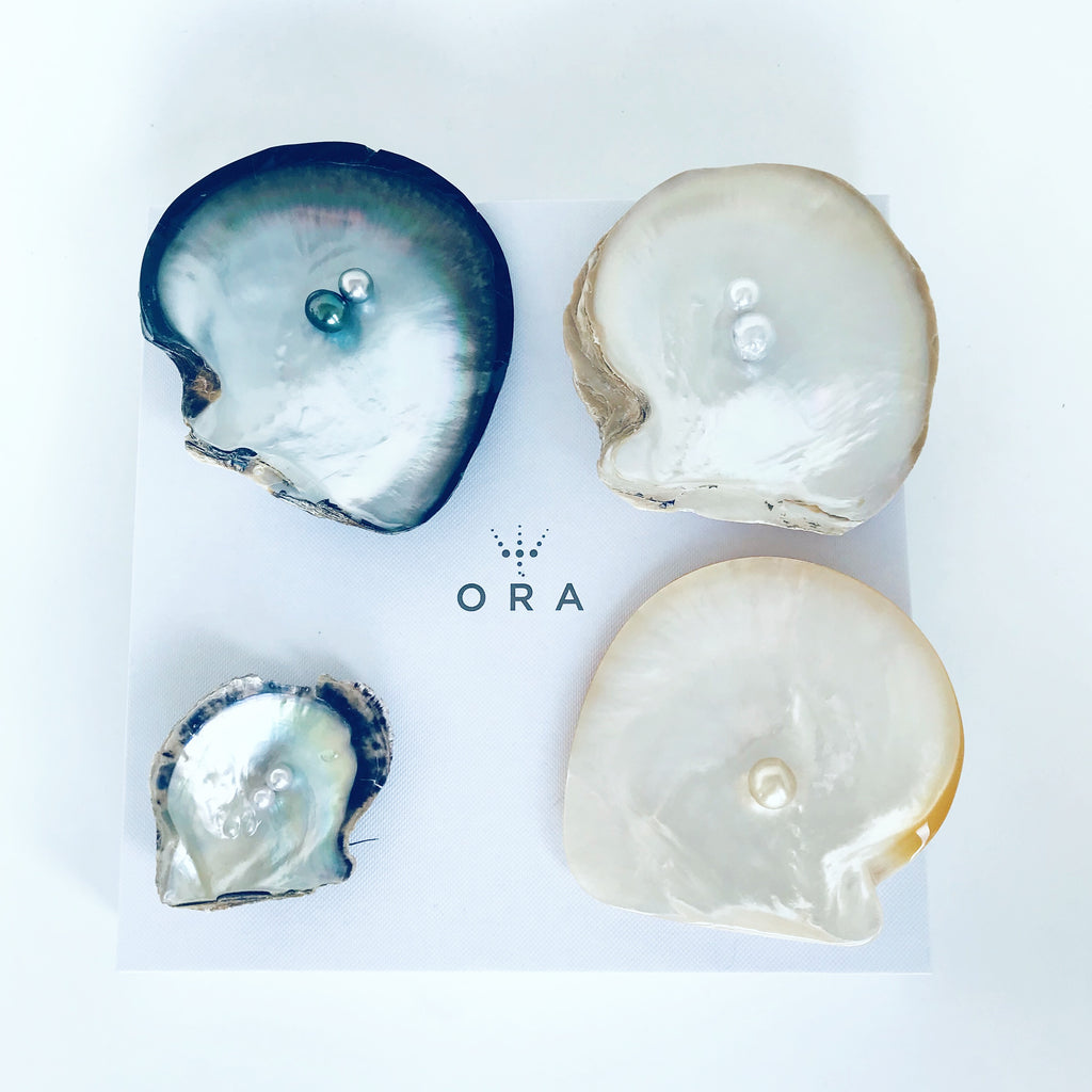ORA Pearls Workshop: Wednesday 15 January 2020 2pm-4pm