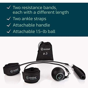 P.volve Signature Kit with Workout Ball, and Resistance Bands for at Home Workouts and Fitness (Gray) - Fitness Gear