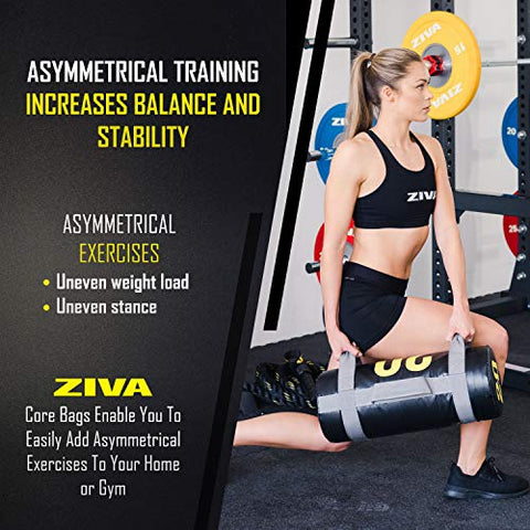 "Image of ZIVA Power Core Bag - Pre-Weighted Heavy Duty Commercial Grade Exercise Sandbags with Non-Slip Handles - Multiple Sizes - Home Gym Weight Training Crossfit Workouts - 20lb, 24"" L x 9.0"" D - FitnessGearUSA.Com"