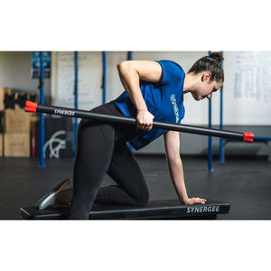 Weighted Workout Bars - Fitness Gear