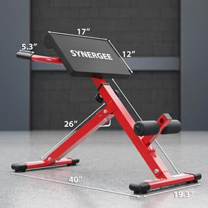 Roman Chair - Fitness Gear