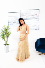 Ausmus Cream/Gold Lengha Suit