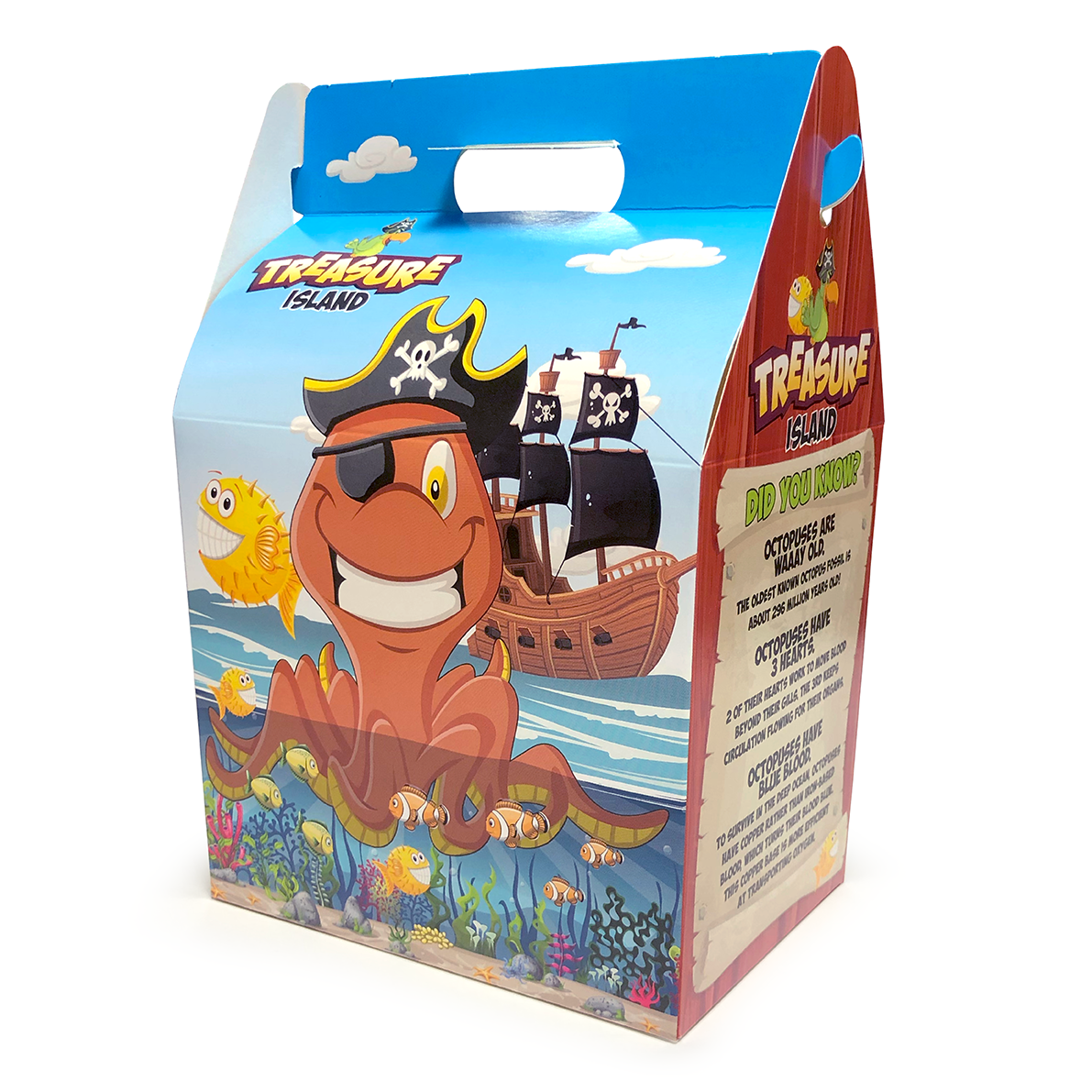 Treasure Island Meal Boxes