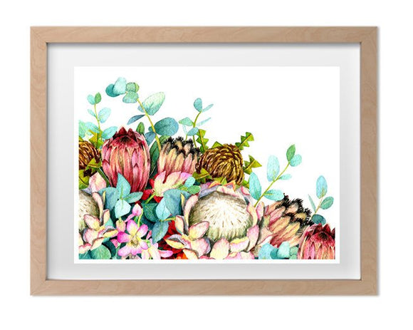 Ink & Ivy - A4 Print - Australian Native Flowers