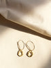 Inferiorem Hoop Drop Earrings (Large)