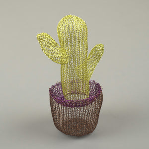 Mini Cactus - Cactus Decor - Yooladesign
