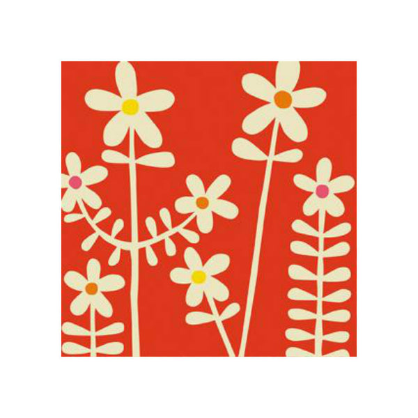 Daisy Flowers Greetings Card