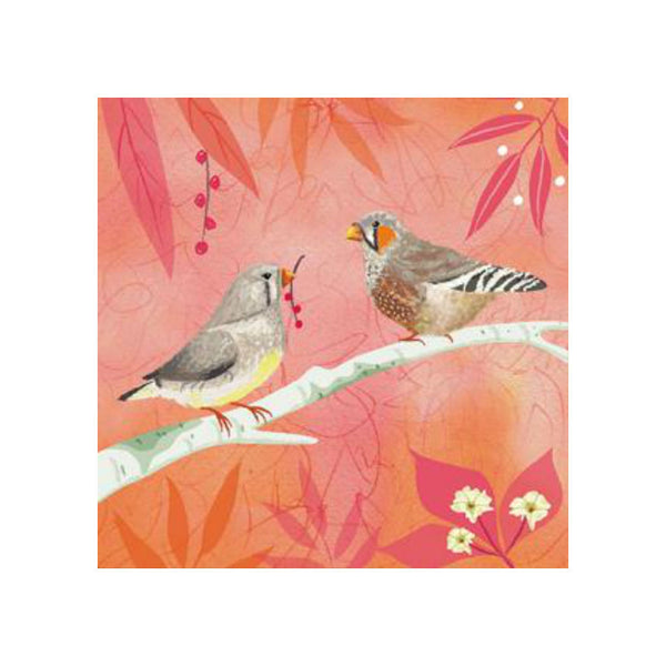 Zebra Finches Greetings Card