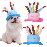 Pet Birthday Hat - Mr Fluffy Singapore Online Pet Store