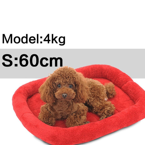 Comfy Pet Cushion / Bed - Mr Fluffy Singapore Online Pet Store