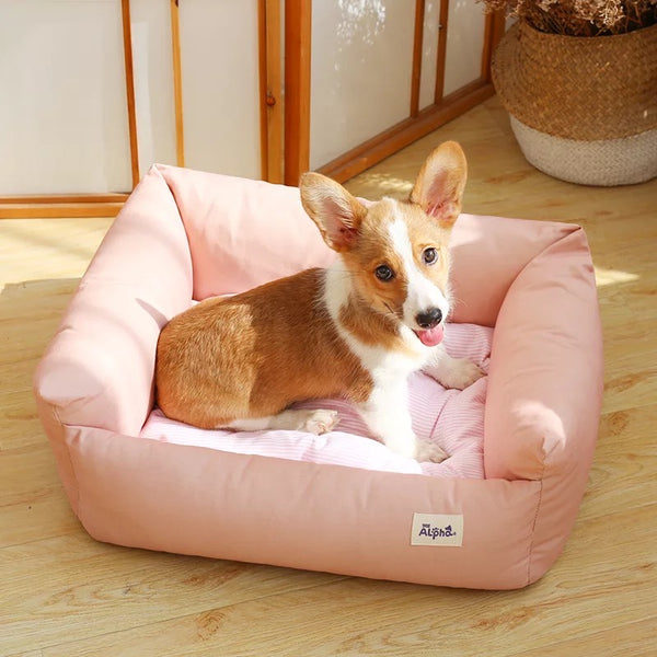 Pastel Pet Cushion / Bed with Waterproof Base - Mr Fluffy Singapore Online Pet Store