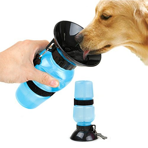 Mess Free Pet Water Bottle - Mr Fluffy Singapore Online Pet Store