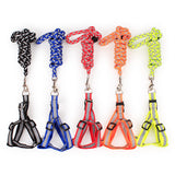 Reflective Pet Harness And Round Leash - Mr Fluffy