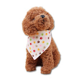 Pet Bandana - Mr Fluffy