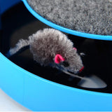 Mouse Chasing Toy For Cats - Mr Fluffy