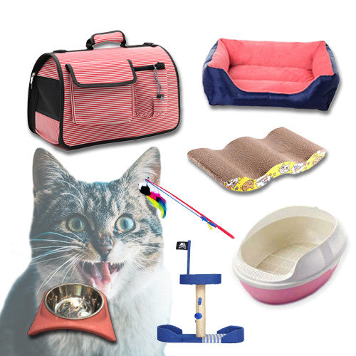 Kitten Starter Kit - Mr Fluffy Singapore Online Pet Store