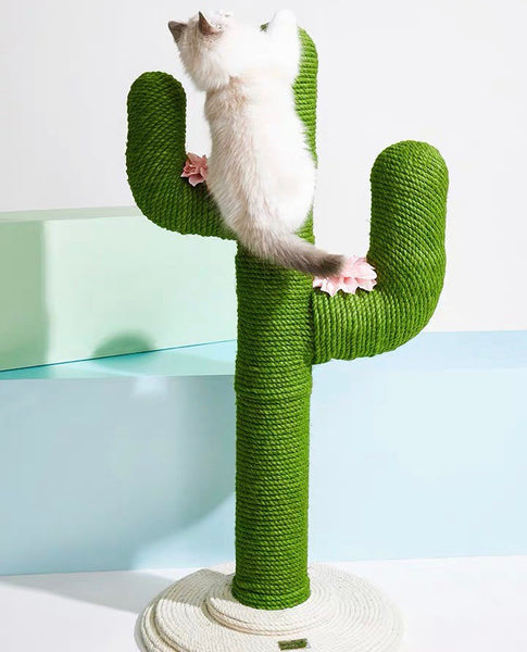 Hemp Rope Cactus Cat Climbing Tree / Scratch Post - Mr Fluffy Singapore Online Pet Store