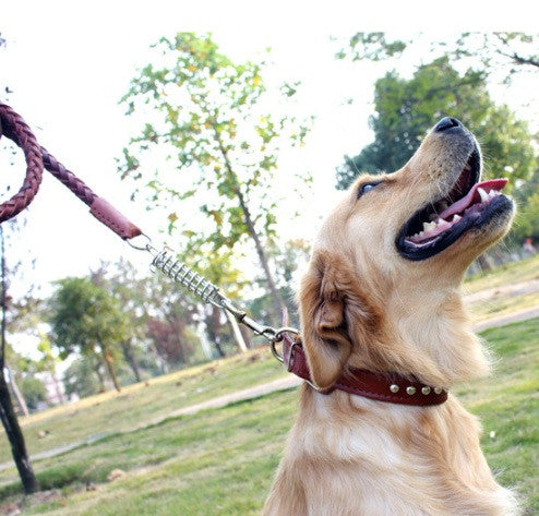 Leather Dog Leash - Mr Fluffy Singapore Online Pet Store