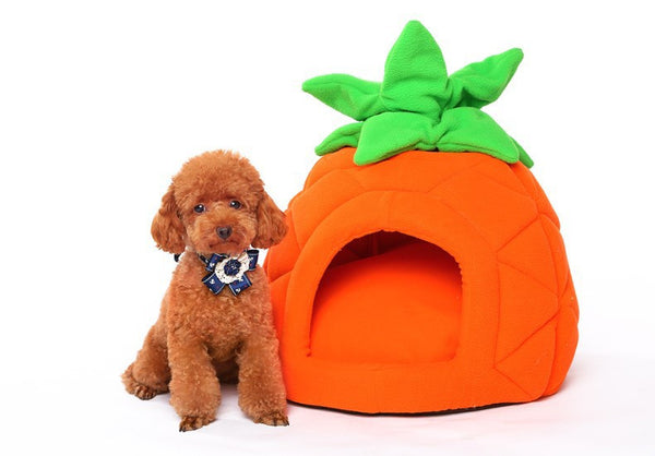 Pineapple pet bed - Mr Fluffy Singapore Online Pet Store