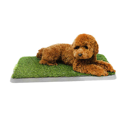Potty Patch Pet 3-Tier Pee Tray - Mr Fluffy Singapore Online Pet Store
