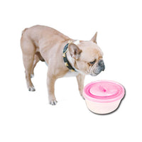 Silent Pet Drinking Fountain - Mr Fluffy Singapore Online Pet Store