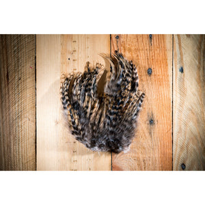 Barred Strung Neck Hackle - Tan