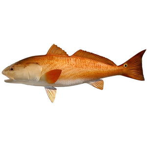Redfish Mount