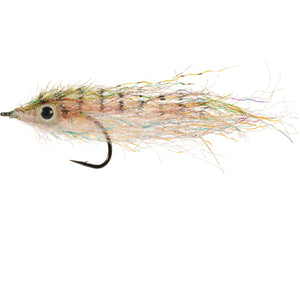 Enrico Puglisi Ghost Minnow (2 Pack) - Rainbow - Size 4