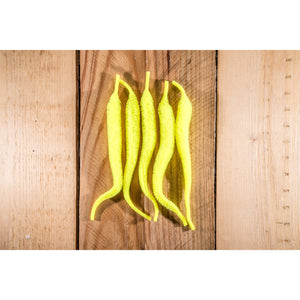 Mangum's Original Mini Dragon Tail UV2 - Fluorescent Yellow