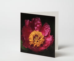 Greetings card - flowers