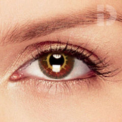 Coco Brown Coloured Contacts