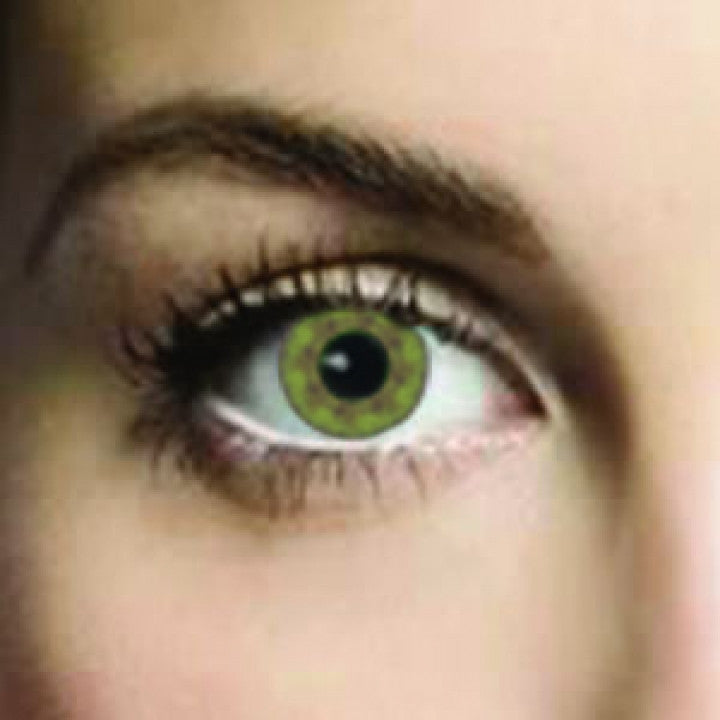Olive Green Coloured Contacts (Comfort)