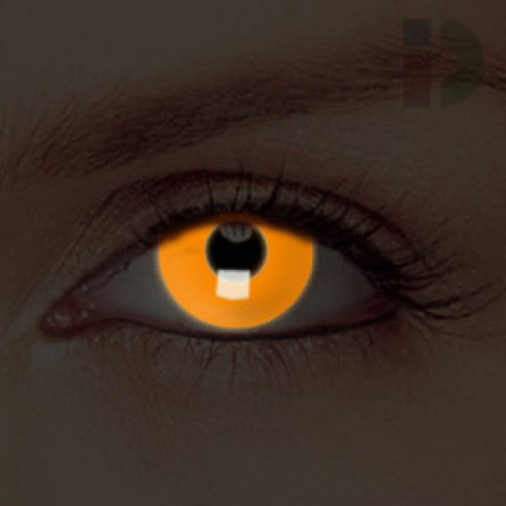 Orange Glow In The Dark Contacts